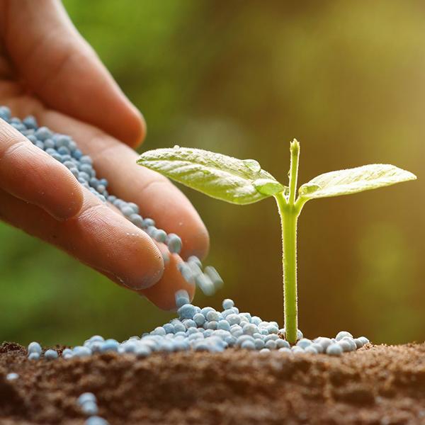croper-category-Fertilizantes-y-enmiendas