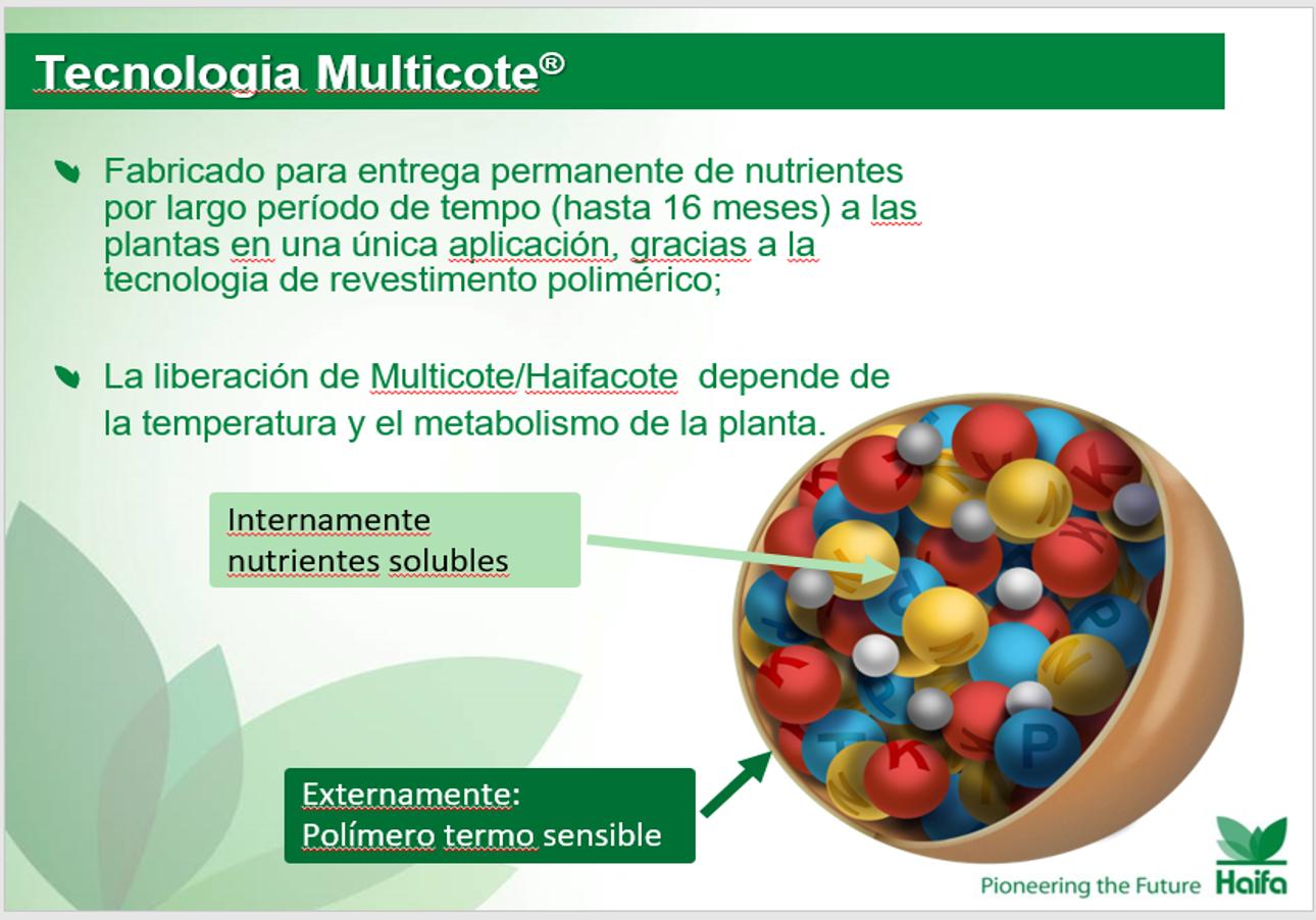 Multicote 1