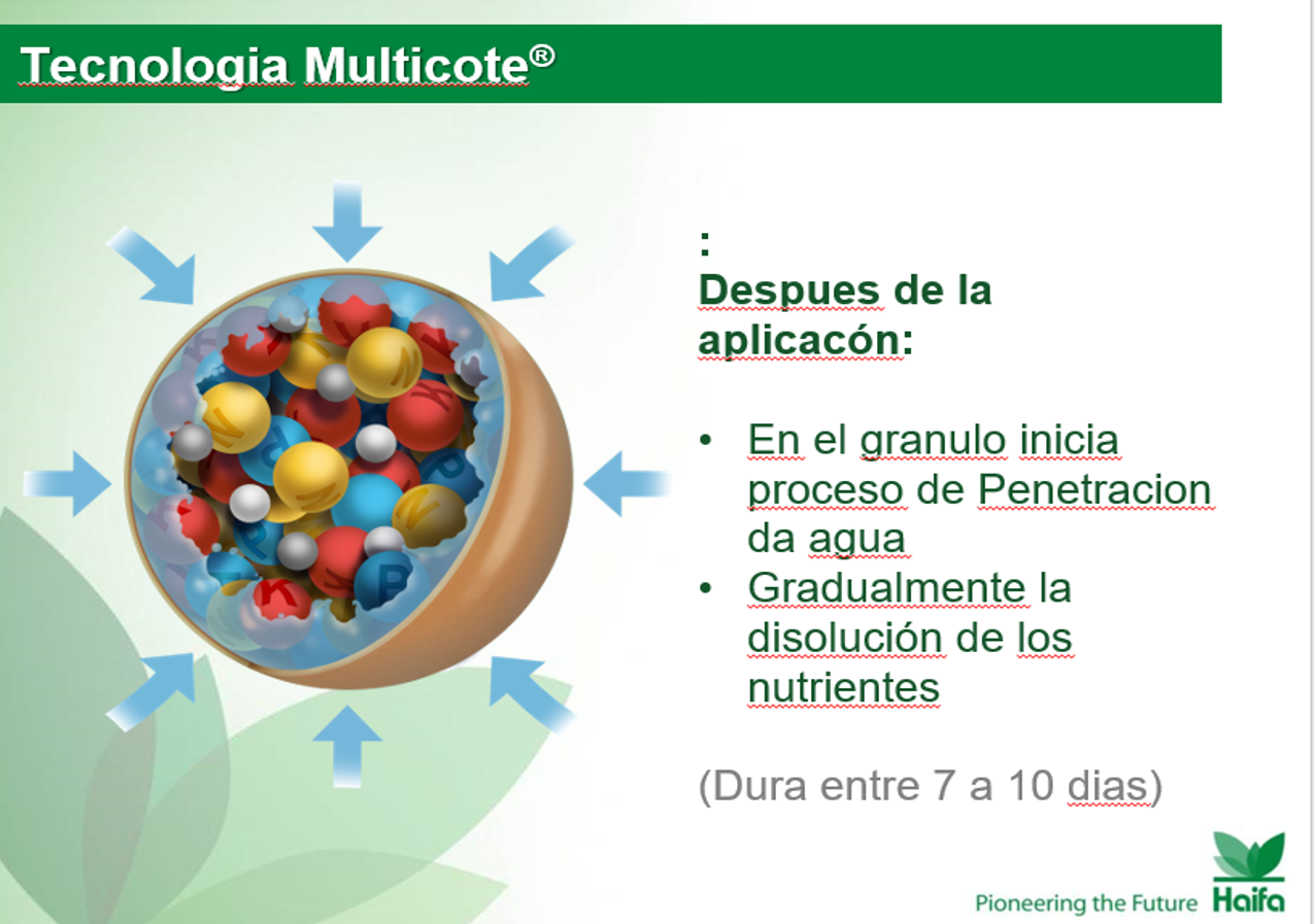 Multicote 2.png
