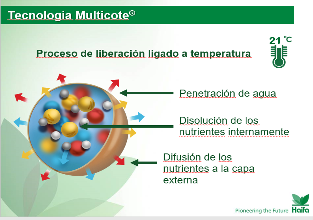 Multicote 3a.png