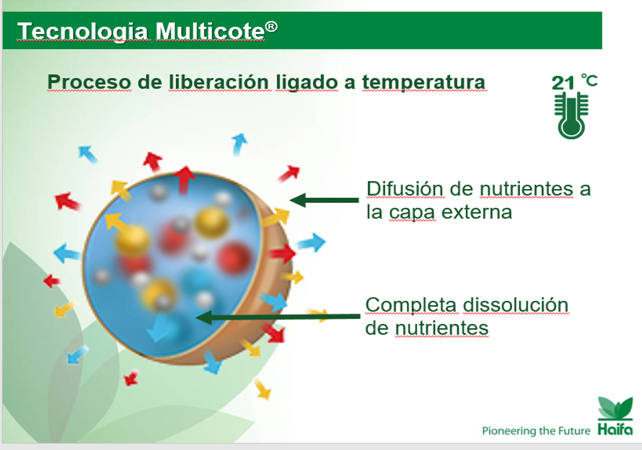 Multicote 3.png