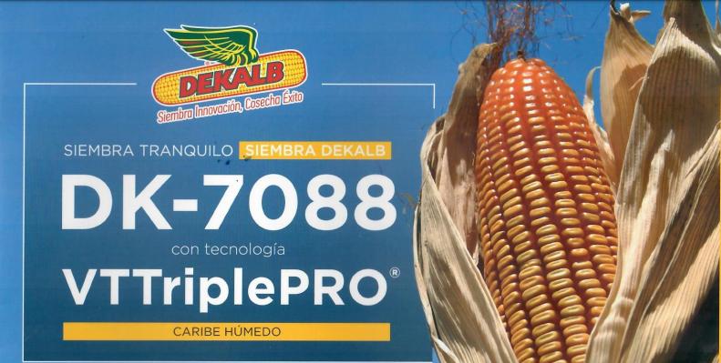 Semilla-De-Maíz-7088-Vt3pro-Semillas
