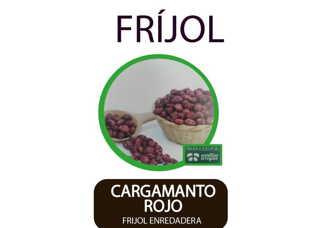 Frijol-Enredadera-Cargamanto-Rojo-Semillas