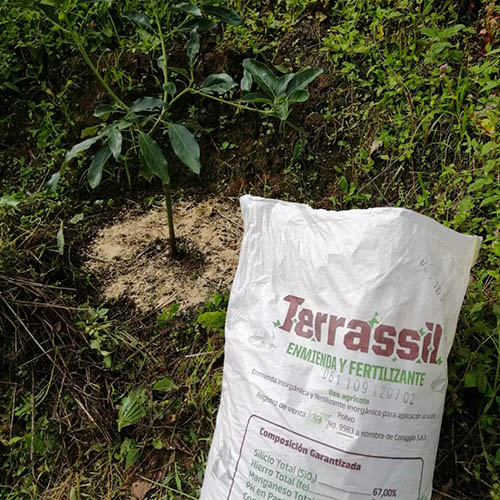Terrassil Silicio Edáfico - Algas Diatomeas Fertilizantes