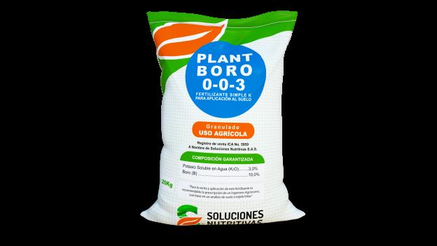 Plant-Boro
