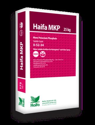Haifa mkp