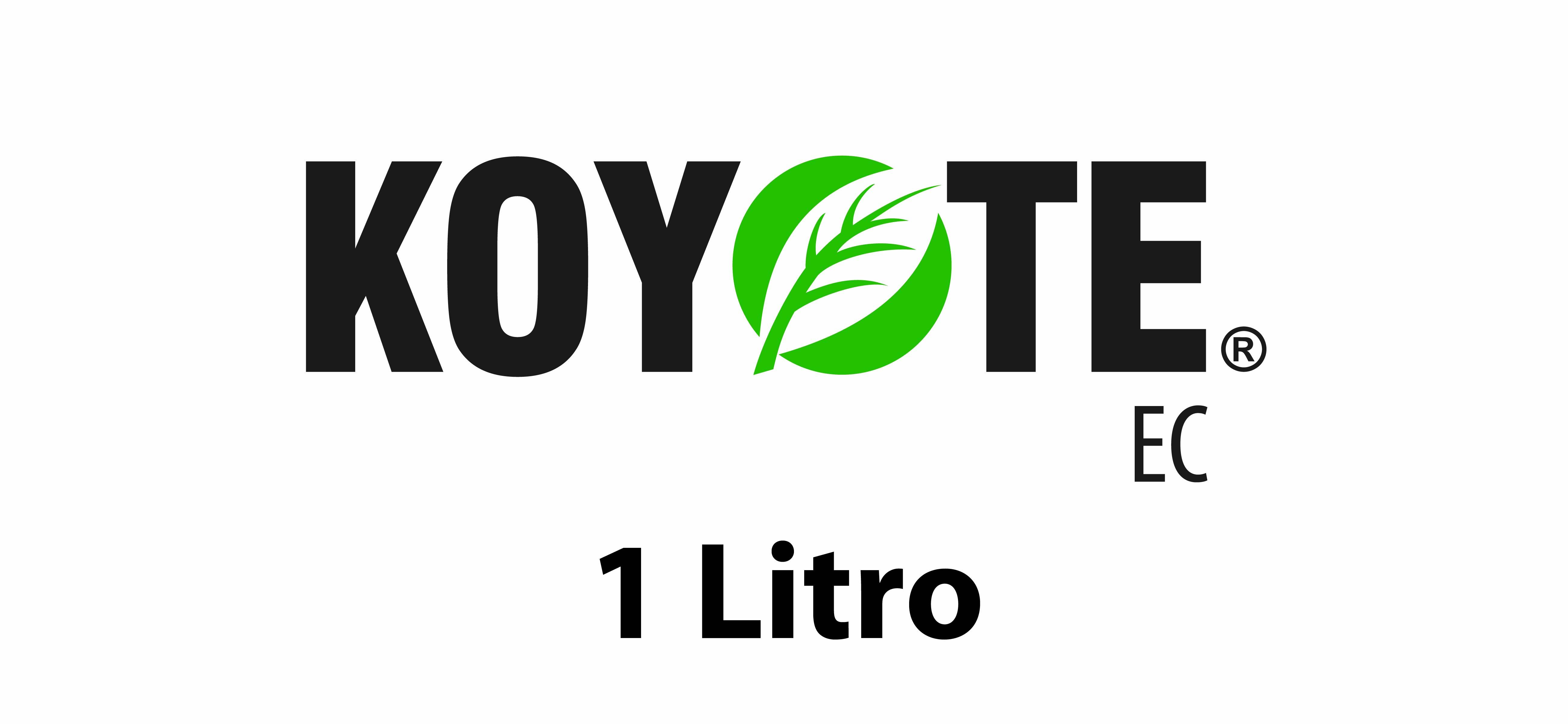 Koyote 1L.jpg