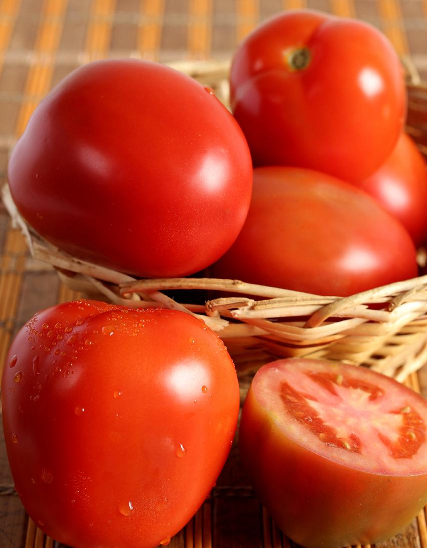 Semilla-De-Tomate-Chonto-Donatello-Híbrido