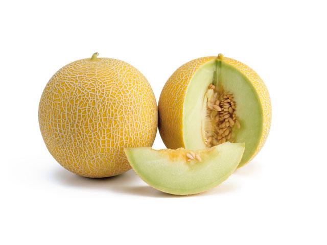 Melon hibrido agroreza