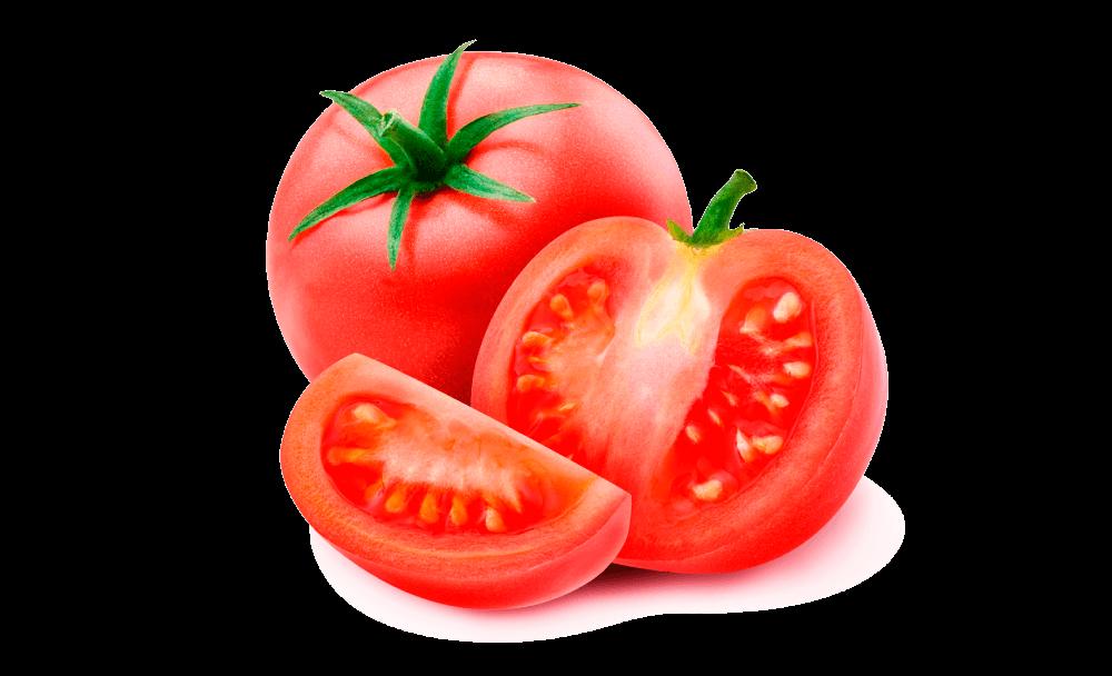 Semilla-Tomate-Santa-Clara.AGROREZA.png