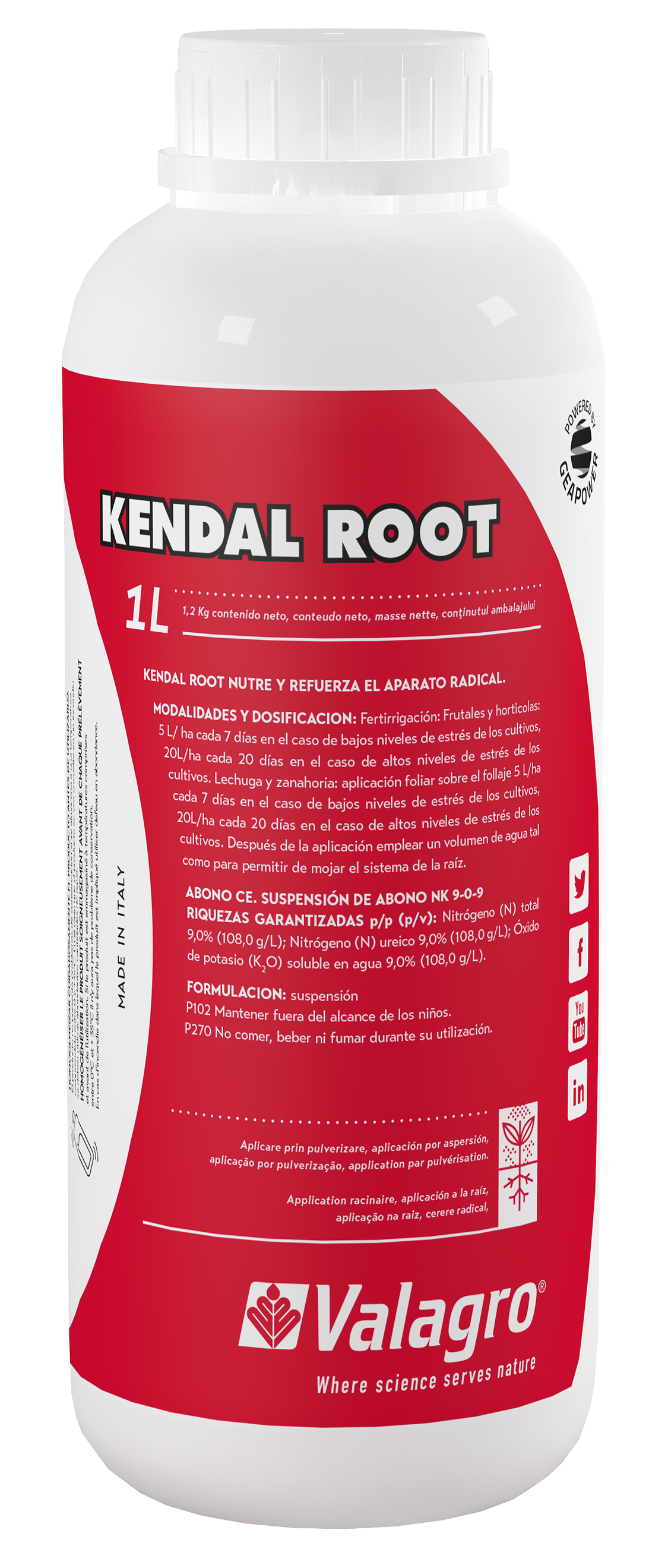 KENDAL_ROOT_1_L_B-Croper.jpg