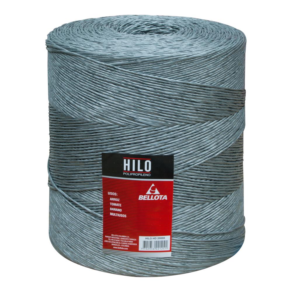 Hilo 2000