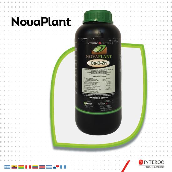 Novaplant 2