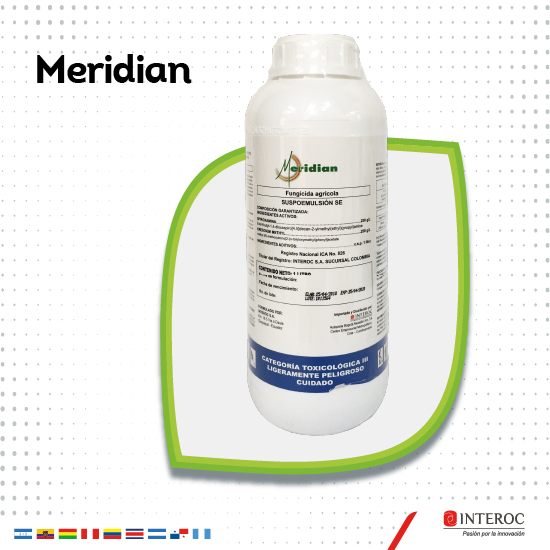 Meridian 1