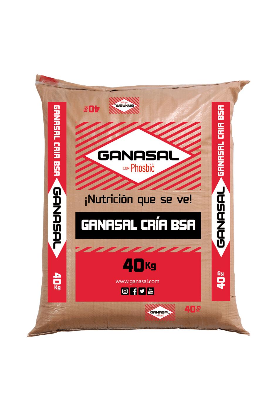 Ganasal-Cria-BSA-Ganasal.png