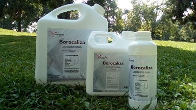 Borocaliza fertilizante