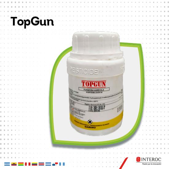 TopGun 2.jpg