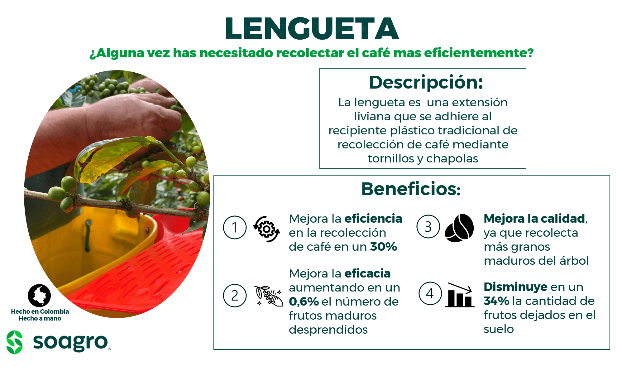 Lengueta_1.png