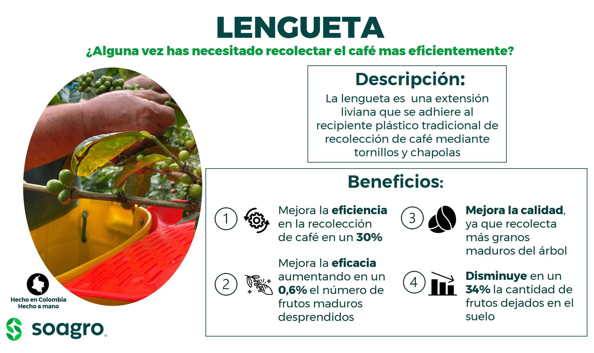 Lengueta_3.jpg