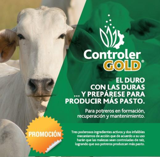 Controler-Gold.jpg