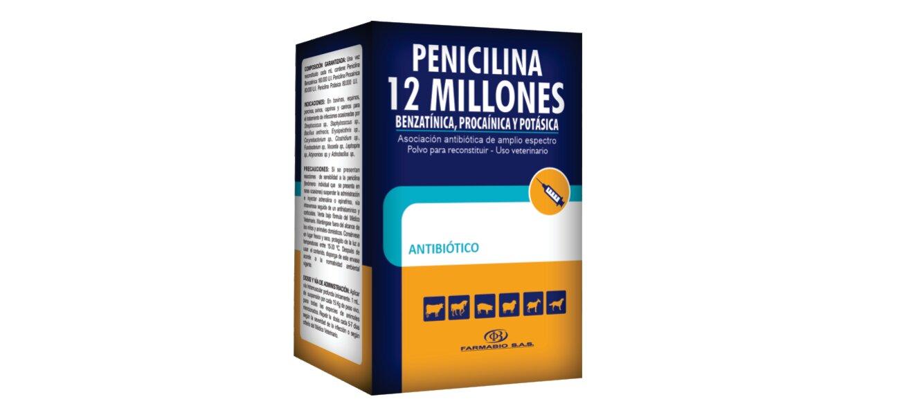 PENICILINA-12-MUI.jpg