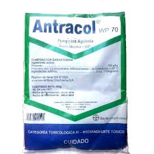 Antracol-bayer-Fungicida.jpg