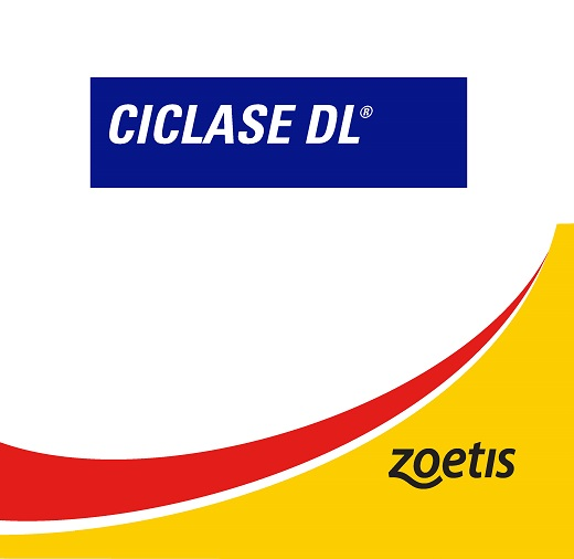 Ciclase.jpg