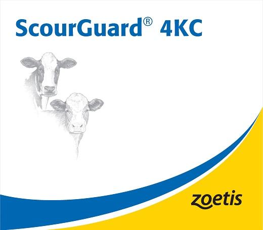 ScourGuard.jpg