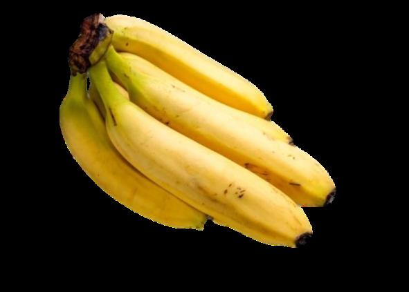 Banano-Agro-Antioquia-Digital.png