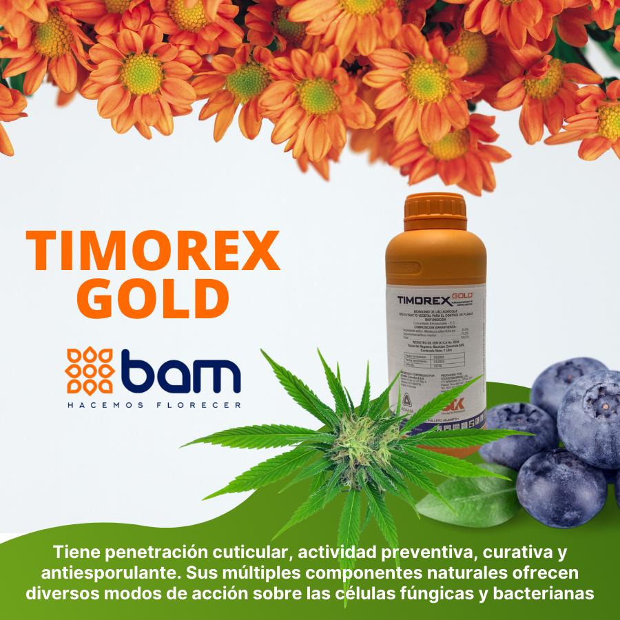 Imagen-Timorex-Gold.png