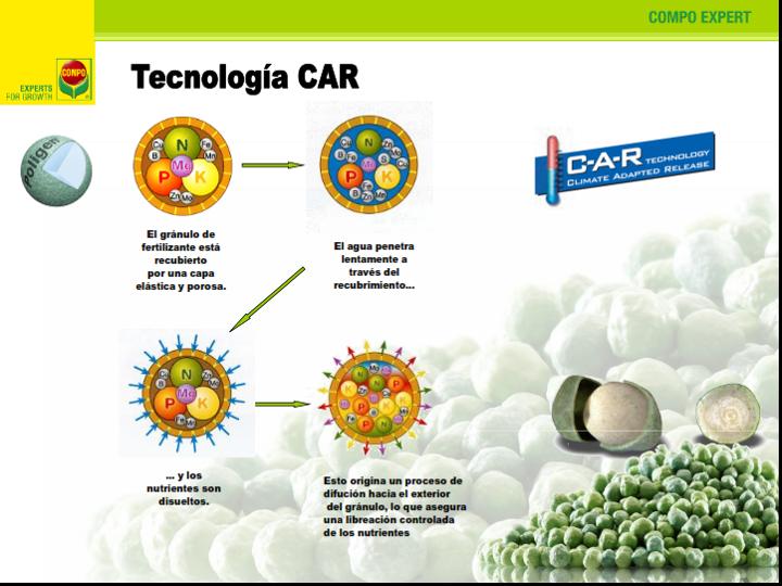 Tecnología-Basacote-Starter-6M-Compo-Expert-Eurofert.png