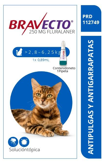 Bravecto-Spot-On-Gato-250-mg.webp