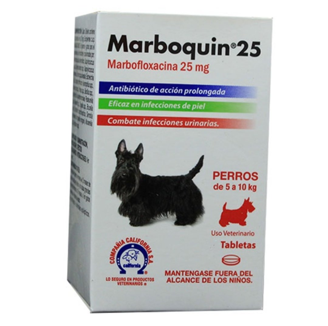 Marboquin 25 perro