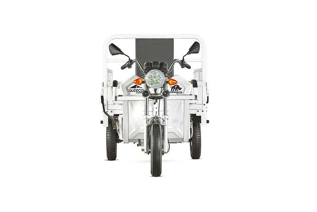 360 TRICARGO 3000e -1.jpg