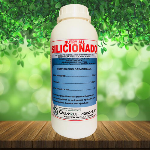Silicionado
