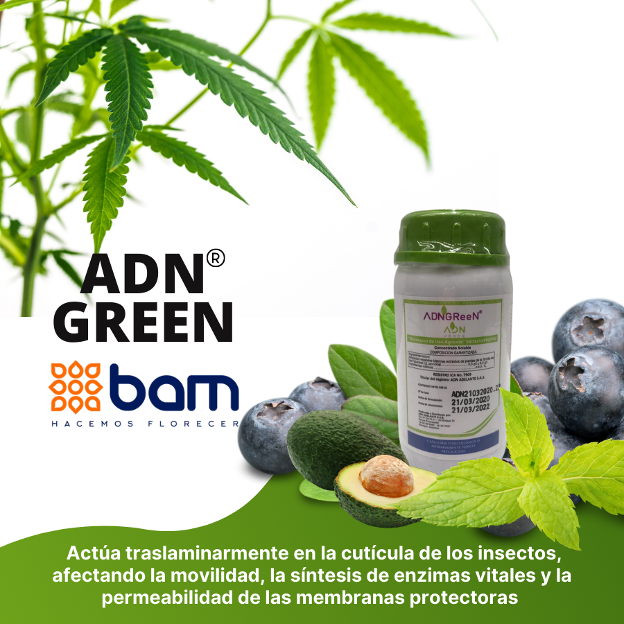 Adn-Green-Bam-Insecticida-Biologico.png