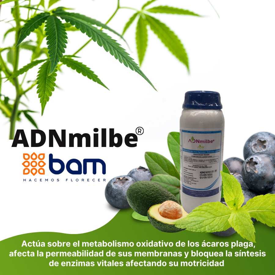Insecticida-Orgánico-Adn-Milbe-Bam.png